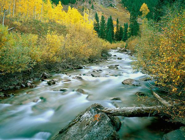 Maroon Creek in the Maroon Bells-Snowmass Wilderness Area, Aspen, Colorado.