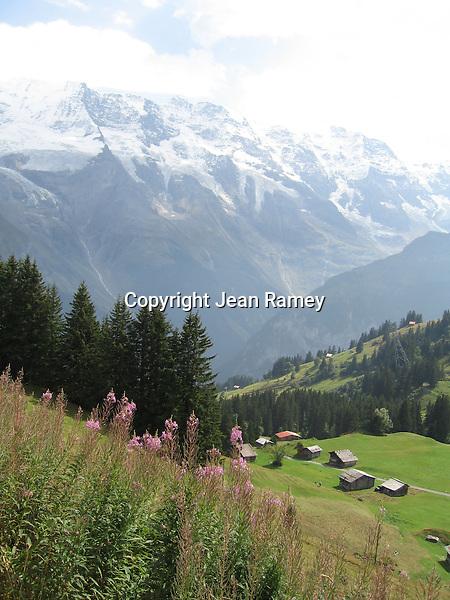 Swiss Alps Vista
