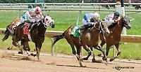 Sharp Harbour winning at Delaware Park on 6/15/13