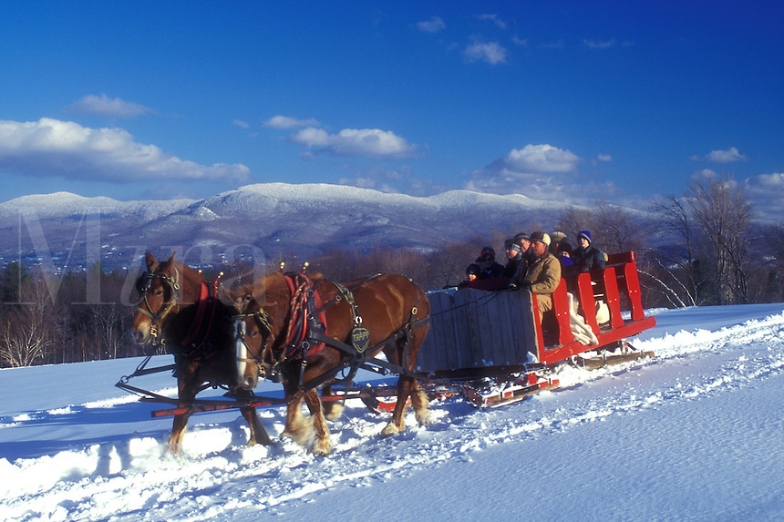 open sleigh ride, Stowe, Vermont, VT, A team of horses pulls a red sleigh full of people through the snow covered field at Trapp Family Lodge in Stowe.