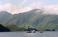 Salmon seiner, the F/V Northern Orion fishing off Kodiak Island, Alaska