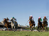 Proviso, center, affirmed her status as the top turf female, in the Diana.