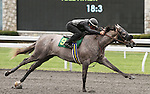 April 03, 2014: Hip 94 Tapit - Dynaforce consigned by Kirkwood Stables worked 1/4 in 20:4.  Candice Chavez/ESW/CSM