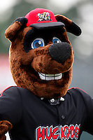 July 3, 2009:  Batavia Muckdogs mascot Homer during a game at Dwyer Stadium in Batavia, NY.  The Muckdogs are the NY-Penn League Short-Season Class-A affiliate of the St. Louis Cardinals.  Photo By Mike Janes/Four Seam Images