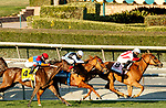 ARCADIA, CA DECEMBER 26: #8 Duopoly, ridden by Flavien Prat, goes wire to wire to win the American Oaks (Grade l) on December 26, 2020 at Santa Anita Park in Arcadia, CA.<br /> (Photo by Casey Phillips/Eclipse Sportswire/CSM.)