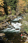 Fly fishing on the North Fork of the Middle Fork of the Willamette River; Willamette National Forest, Cascade Mountains, Oregon..#0510287
