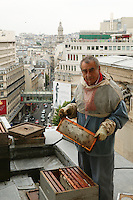 Jean Poucton <br />