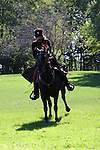 A Russian Cossack riding a horse in the field