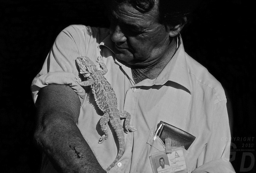 An outback Mining supervisor with a white Bearded Dragon, South Australia