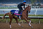 DEL MAR, CA - NOVEMBER 31: Best Performance, owned by West Point Thoroughbreds, Inc., Tango Uniform Racing & Robert Masiello and trained by Christophe Clement, exercises in preparation for Breeders' Cup Juvenile Fillies Turf at Del Mar Thoroughbred Club on October 31, 2017 in Del Mar, California. (Photo by Jesse Caris/Eclipse Sportswire/Breeders Cup)