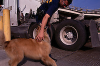 Customs Service agent plays with his search dog while patroling at the Mexican border.  The Canine Enfocement Program is used to combat terrorism, interdict narcotics, and other contraband while helping to facilitate and process legitimate trade and travel.