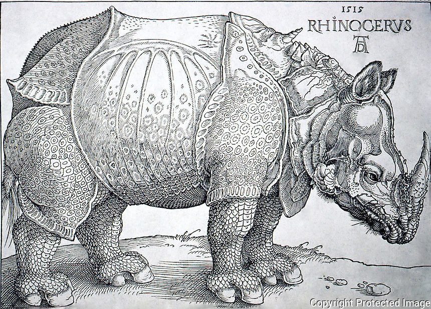 Visual Arts:  Albrecht Durer--Rhinoceros, woodcut dated 1515. From a sketch and written description sent from Lisbon--gift of Indian Sultan.
