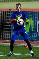 Spainsh David de Gea  during the training of the spanish national football team in the city of football of Las Rozas in Madrid, Spain. November 08, 2016. (ALTERPHOTOS/Rodrigo Jimenez) ///NORTEPHOTO.COM