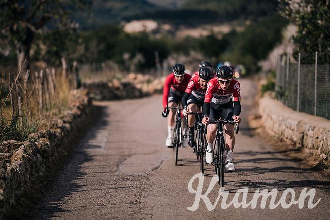 Team Lotto-Soudal taking control of the peloton and pacing Tim Wellens forward<br /> <br /> Trofeo Lloseta - Andratx: 140km<br /> 27th Challenge Ciclista Mallorca