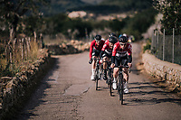 Team Lotto-Soudal taking control of the peloton and pacing Tim Wellens forward<br /> <br /> Trofeo Lloseta - Andratx: 140km<br /> 27th Challenge Ciclista Mallorca