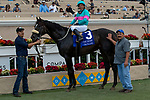DEL MAR, CA  SEPTEMBER 1: #3 Nolde, ridden by Victor Espinoza, in the winners circle after winning the Del Mar Derby (Grade ll) on September 1, 2019 at Del Mar Thoroughbred Club in Del Mar, CA. ( Photo by Casey Phillips/Eclipse Sportswire/CSM)