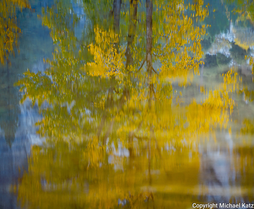 Cottonwoods Reflected, Merced River