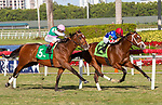 January 02, 2021:  #12 Winfromwithin, with jockey Luis Saez on board, breaks his maiden at Gulfstream Park on January 2nd, 2021, in Hallandale Beach, Florida. Liz Lamont/Eclipse Sportswire/CSM