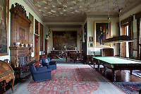 The grand innter hall and billiard room