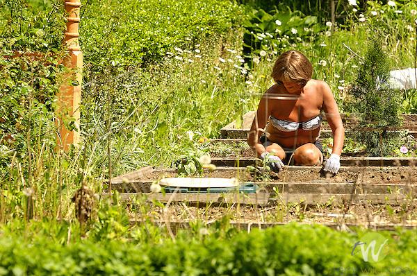 Kim Cooley working in garden weeding.