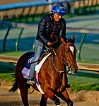 LOUISVILLE, KY - APRIL 30: Coach Rocks, trained by Dale Romans, exercises in preparation for the Kentucky Oaks at Churchill Downs on April 30, 2018 in Louisville, Kentucky. (Photo by John Voorhees/Eclipse Sportswire/Getty Images)