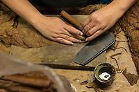 France, Aquitaine, Pyrénées-Atlantiques, Béarn, Navarrenx: La Maison du cigare, Cigares Navarre, Confection des cigares Navarre, La pose de la cape, l'enveloppe du cigare : La rouleuse dépose la poupée sur une feuille de cape, enroule le cigare  //  France, Pyrenees Atlantiques, Bearn, Navarrenx: La Maison du cigare, Cigares Navarre ,  Making up of the Navarre cigar, The laying of the wrapper: the roller puts the filler on a wrapper leaf and wraps the cigar.