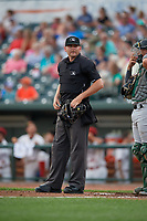 Umpire Pete Talkington during a Midwest League game between the Clinton LumberKings and Great Lakes Loons on July 19, 2019 at Dow Diamond in Midland, Michigan.  Clinton defeated Great Lakes 3-2.  (Mike Janes/Four Seam Images)