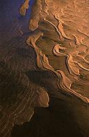 praias de areia no rio Branco durante a seca<br /> Boa Vista - Roraima