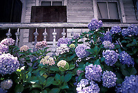 Flowers in front of old porch<br />