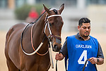 February 17, 2020:Gold Street (4) with jockey Martin Garcia aboard during the Southwest Stakes at Oaklawn Racing Casino Resort in Hot Springs, Arkansas on February 17, 2020. Ted McClenning//Eclipse Sportswire/CSM