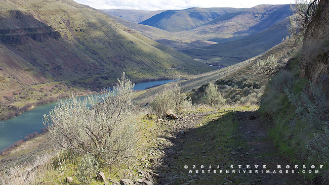 Free Bridge Road makes for a white knuckle descent into the Deschutes Canyon.