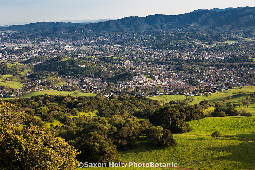 City of Novato seen from Mt. Burdell State Park, California spring green hills with Oak trees
