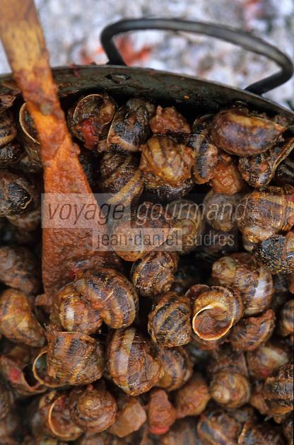 Europe/France/Languedoc-Roussillon/66/Pyrénées-Orientales/Banyuls-sur-Mer: recettes de la Sanch - cuisson des escargots à la Catalane ou petit gris à la tomate