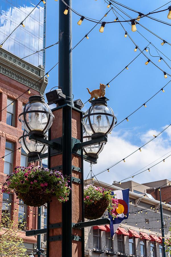 Larimer Square Street Light