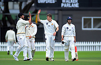 during day two of the Plunket Shield cricket match between the Wellington Firebirds and Auckland at Basin Reserve in Wellington, New Zealand on Saturday, 9 November 2019. Photo: Dave Lintott / lintottphoto.co.nz