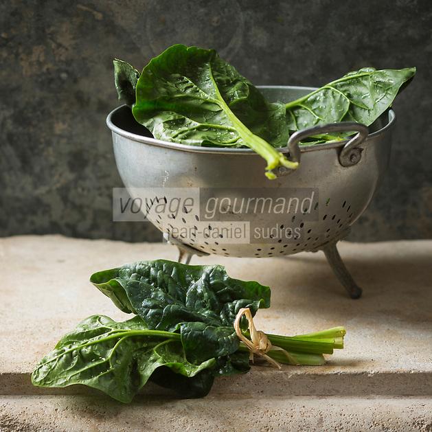 Epinards // Spinach