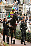 09-11-11 : Before the race the japanese horse Hiruno d'Amour