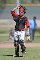 Arizona Diamondbacks catcher Jose Herrera (15) during an Instructional League game against the Chicago Cubs on October 5, 2013 at Salt River Fields at Talking Stick in Scottsdale, Arizona.  (Mike Janes/Four Seam Images)