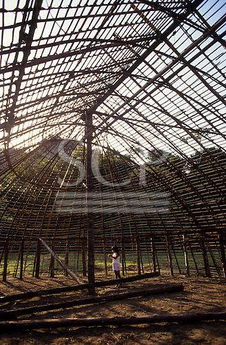 Brazil. Yawalapiti communal house under construction with timber and wattle framework.