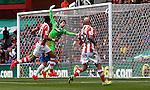 Stoke City v Newcastle United 12.4.2014