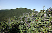 Appalachian Trail - Mount Moosilauke during the summer months from Beaver Brook Trail in the White Mountains, New Hampshire USA .