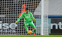 West Ham United goalkeeper Adrian makes a save on his way to a third consecutive 0-0 draw during the Barclays Premier League match between Swansea City and West Ham United played at The Liberty Stadium, Swansea on 20th December 2015