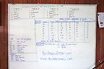 Teams & Data