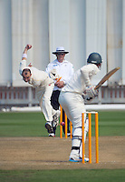131109 Plunket Shield Cricket - Wellington Firebirds v Central Stags