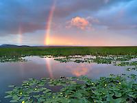 Rainbow at Klamath Marsh National Wildlife Refuge, Oregon