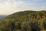 Israel, Jerusalem Mountains. A view of Mount Haruach