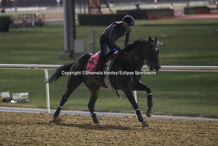 March 25, 2021: Scenes from Breakfast With The Stars morning at Meydan Racecourse, Dubai, UAE.<br /> Shamela Hanley/Eclipse Sportswire/CSM