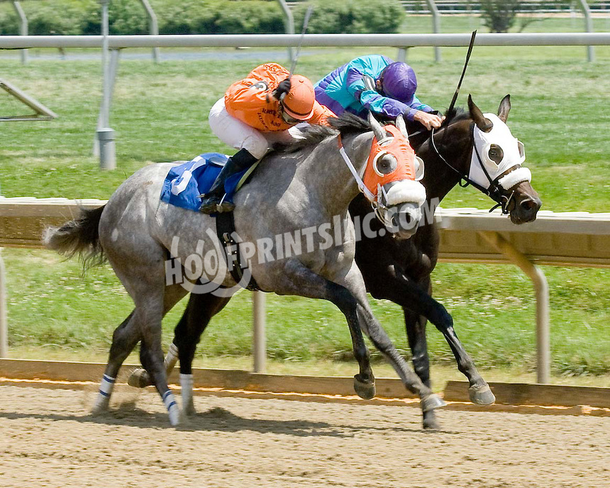 Cranberry winning at Delaware Park on 7/4/09