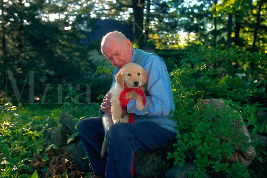 Senior man holding his golden retriever puppy.