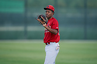 GCL Cardinals Yowelfy Rosario (11) during warmups before a Gulf Coast League game against the GCL Astros on August 11, 2019 at Roger Dean Stadium Complex in Jupiter, Florida.  GCL Cardinals defeated the GCL Astros 2-1.  (Mike Janes/Four Seam Images)